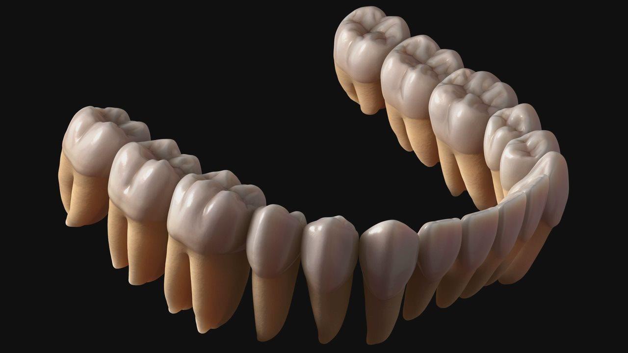 Картинки на рабочий стол зуб